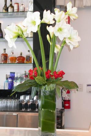 Lancement au Koko Bar+Restaurant:  # 3