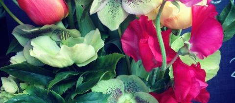 Boutique Fauchois Fleurs